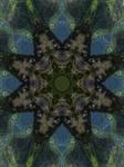 Deep Star Valley Kaleidoscope