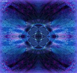 Nocturne Color Wave Lab