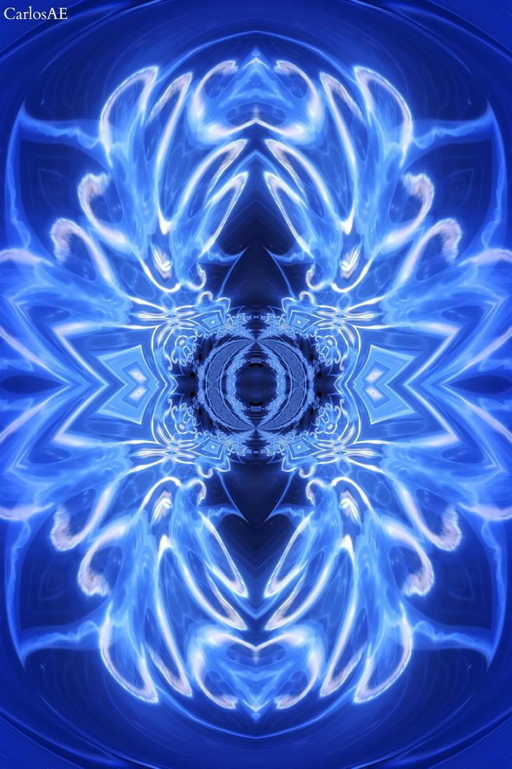 JellyDragon's X-Ray by CarlosAE
