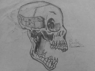 Old Skull Sketch Drawing by CarlosAE