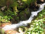 Water-Movement