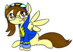 Can I be a Wonderbolt now?