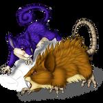 Rattata and evo