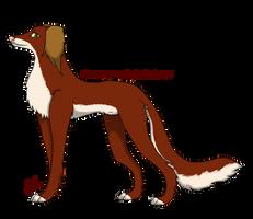 .:Saluki Adoption 1:. by AkumaAgma