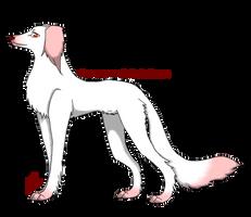 .:Saluki Adoption 2:. by AkumaAgma