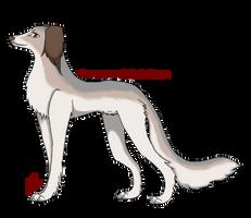 .:Saluki Adoption 5:. by AkumaAgma