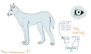 Angae by AkumaAgma