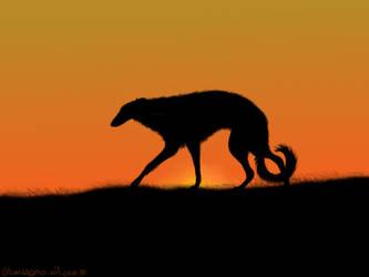 .:Sun:. by AkumaAgma