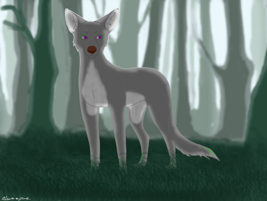 .:Forest:. by AkumaAgma