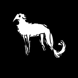 AkumaAgma's Profile Picture