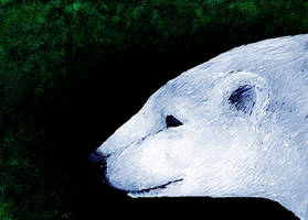 MS Paint Polar Bear