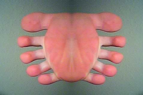 Toe-Bug by PsydewaysTears