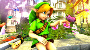 Zelda Fantasy Young Link