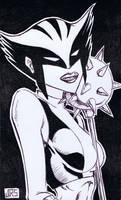 Hawkgirl [35b] by JRS-ART