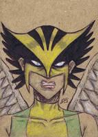 Hawkgirl [sc1] by JRS-ART