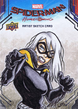 Black Cat New