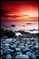 The Dream of Sea by Falconia