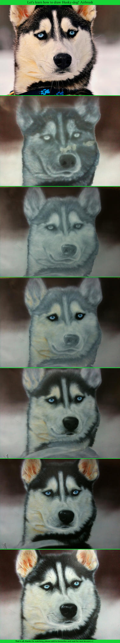 How to draw husky. Airbrush. by Lutique
