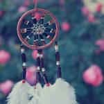 I'll capture your dreams