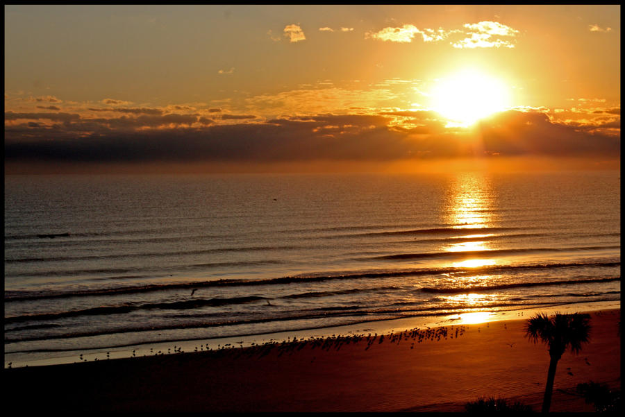 Sunrise over Daytona Beach by Rebacan