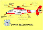 S-67 other Coast Guards whatif