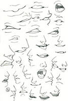 Sketch.  Mouth and nose by KateCross