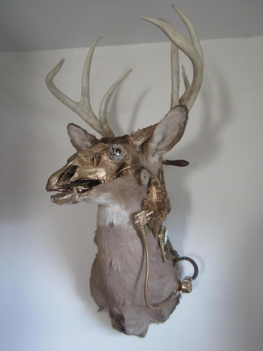 Steampunk Taxidermy Deer 1 By Steamjunker On Deviantart