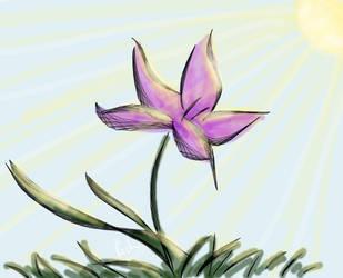 Pretty Pretty Flower by RichiePoop