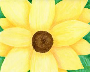 Sunflower by RichiePoop