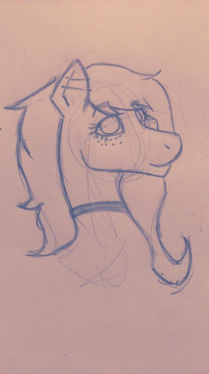 Pony Practice by AshleyBinx