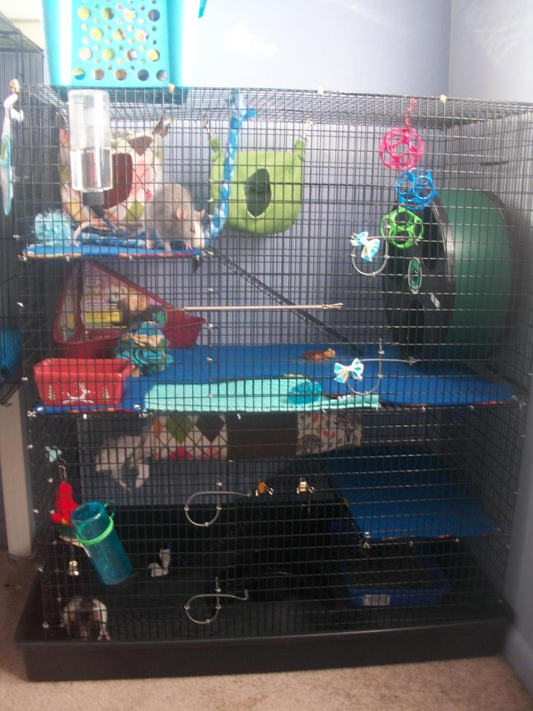 rat cage by littleoddawa on deviantart. Black Bedroom Furniture Sets. Home Design Ideas