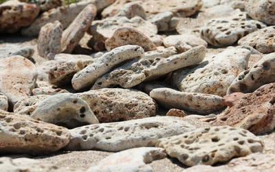 Beach rocks by nicubunu