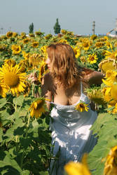 Smell the flowers by nicubunu