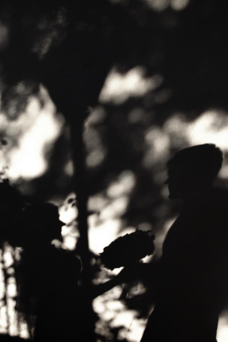 The shadow of love by nicubunu