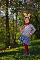 The bunny by nicubunu