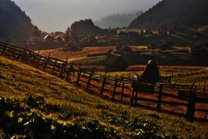 Morning in Fundata by nicubunu