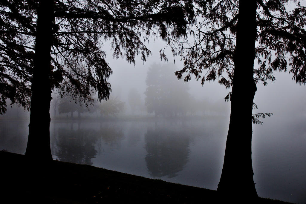Framing the mist by nicubunu
