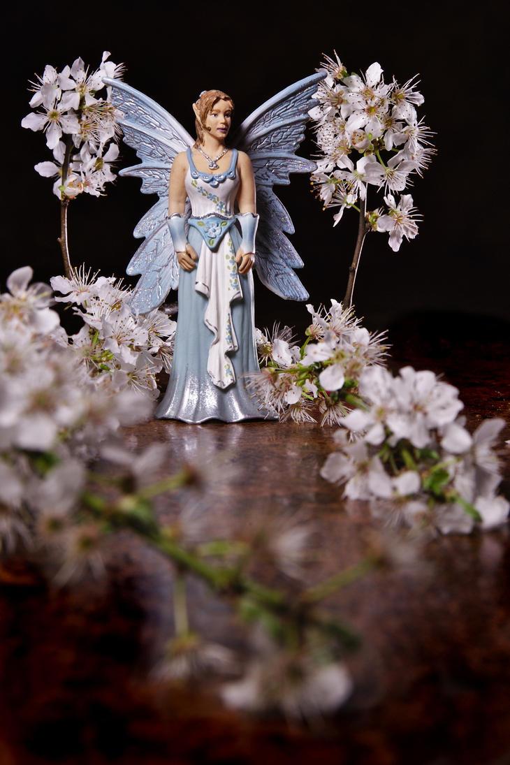 Spring magic by nicubunu