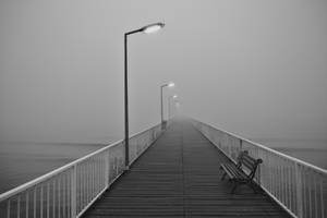 Vanishing in to the mist