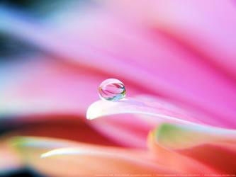 Crystal Waterdroplet by onixaStock