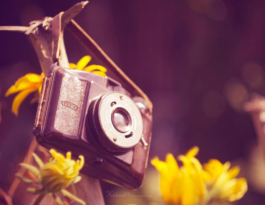 old camera. by Katari01