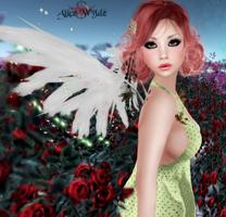 I DO Believe in Fairies 3 by GhostofDarwin