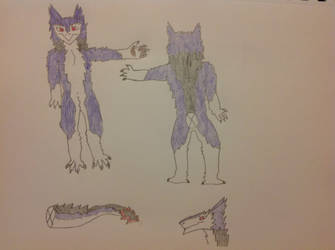 Reign Reference Sheet 2.0 by Reign-The-Sergal
