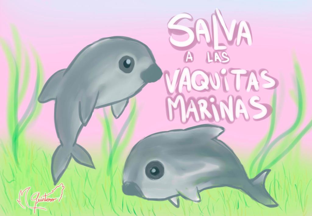 Salva a las vaquitas marinas by QU1NT3R0