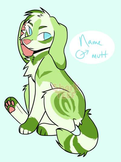 Mellon puppy (SOLD)