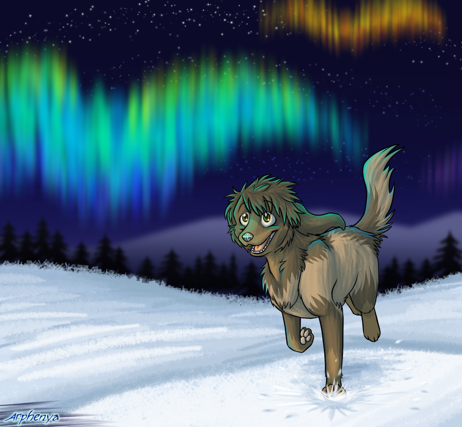 Northern Lights by Kylua95
