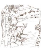 Wildlife study by woodnone