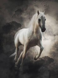 Arabian Horse (Digital Drawing) by lunaroveda