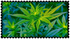 weed stamp II by sosse123