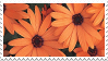orange flowers stamp by sosse123